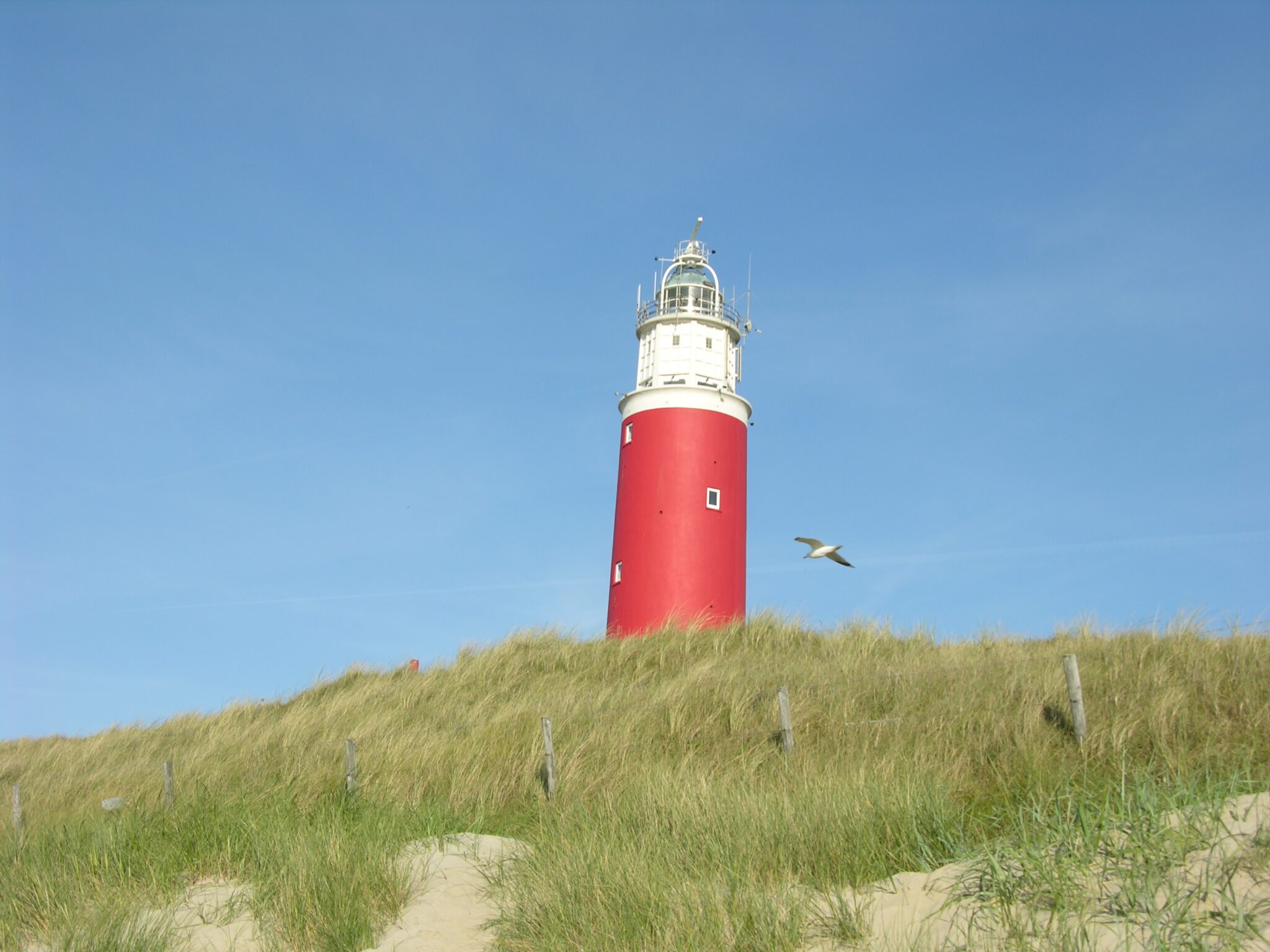 De Ark Texel vuurtoren