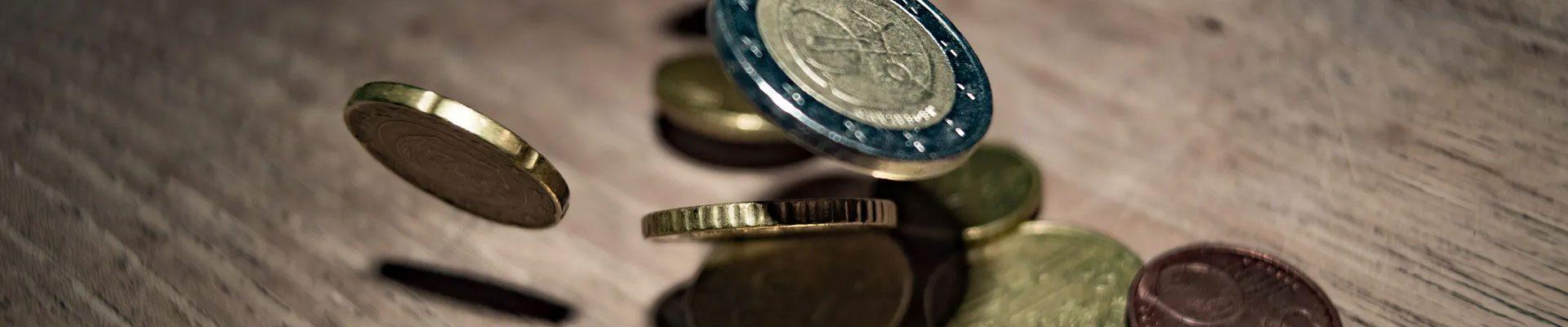 wat kost een webshop euros